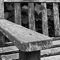 The Garden Bench by Agent Green Exposed