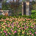 The Garden Enterance by Robert Pearson