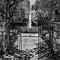 The Garden Gate by Nicholas Costanzo