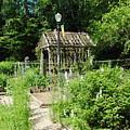 The Garden by Jost Houk