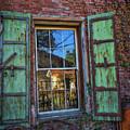 The Garden Window by Mitch Shindelbower