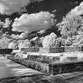 The Gardens In Ir by Michael McGowan
