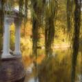 The Gazebo by Ayesha  Lakes