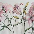 Gentle Flowers by Rita Fetisov