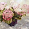 The Gift Hydranga by Elaine Bigelow