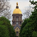 The Golden Dome by Christopher Miles Carter