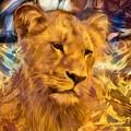 The Golden Lioness  by Daniel Arrhakis