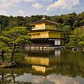 The Golden Pagoda In Kyoto Japan by David Smith