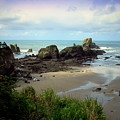The Gorgeous Northwest Pacific Coastline by Joyce Dickens