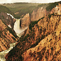 The Grand Canyon Of The Yellowstone by Greg Norrell