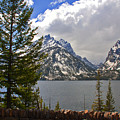 The Grand Tetons And The Lake by Susanne Van Hulst