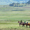 The Great Montana Expanse by Todd Klassy