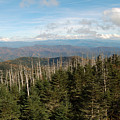 The Great Smoky Mountains 17 by Greg Straub