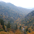 The Great Smoky Mountains 24 by Greg Straub