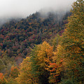 The Great Smoky Mountains 6 by Greg Straub