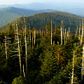 The Great Smoky Mountains by David Lee Thompson