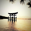 The Great Torii  by Helge