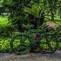 The Green Bicycle by Michelle Meenawong