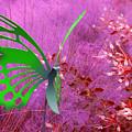 The Green Butterfly by Rosalie Scanlon