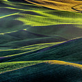 The Green Waves Of Palouse Wa Dsc05032  by Greg Kluempers