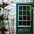 The Green Window by Karon Melillo DeVega