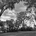 The Grounds Of Fort Caroline National Memorial by John M Bailey