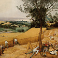 The Harvesters By Pieter Bruegel The Elder                             by Pieter Bruegel the Elder