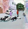 The Herd 5 - Pigs by Usha Shantharam