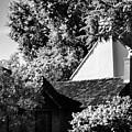 The Hidden English Estate by Peggy Leyva Conley