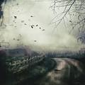The Highlands by Joyce Maris