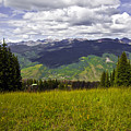 The Hills Are Alive In Vail by Madeline Ellis