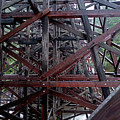The Historic Kinsol Trestle  Inside View by Andrew Kim