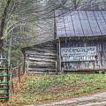 The Honeymoon Lodge by Judy Baird