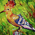 The Hoopoe by Maria Rom