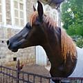 The Horse In The City by Ilia Skulovich