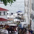 The Horses Of Mackinac Island Michigan Vertical 02 by Thomas Woolworth