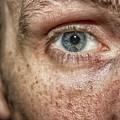 The Human Eye by Martin Newman