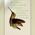 The Hummingbird by Donna Bentley