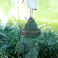 The Hydrant Bird by Rob Hans