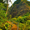 The Iao Needle - Maui by Michael Rucker