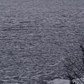 The Ice Float by Hella Buchheim