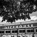 The Icehouse - Black And White - Bentonville Market District - Square Print by Gregory Ballos