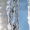 The Iceman Screameth by Roxy Riou