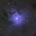 The Iris Nebula by Ken Crawford
