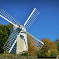 The Jamestown Windmill by Nancy De Flon
