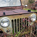 The Jeepster by Neal Grillot