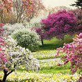 The Joy Of Spring by Jessica Jenney