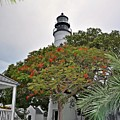 The Key West Lighthouse by Bill Cannon