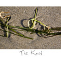 The Knot by Peter Tellone