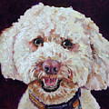 The Labradoodle by Portraits By NC